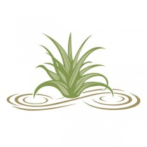 Aloe Master